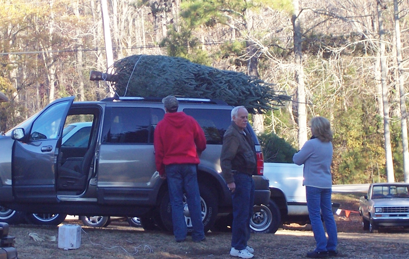 You cut, we prep your Christmas tree so it's ready to take home.