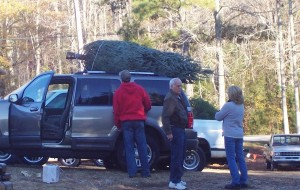 Getting Tree on Car